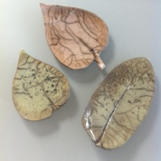 petites-feuilles
